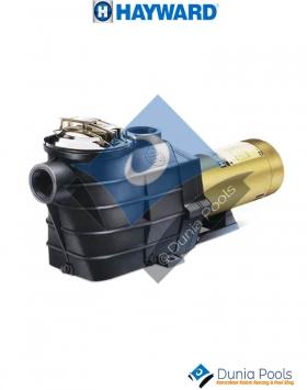 Hayward Super II Pump